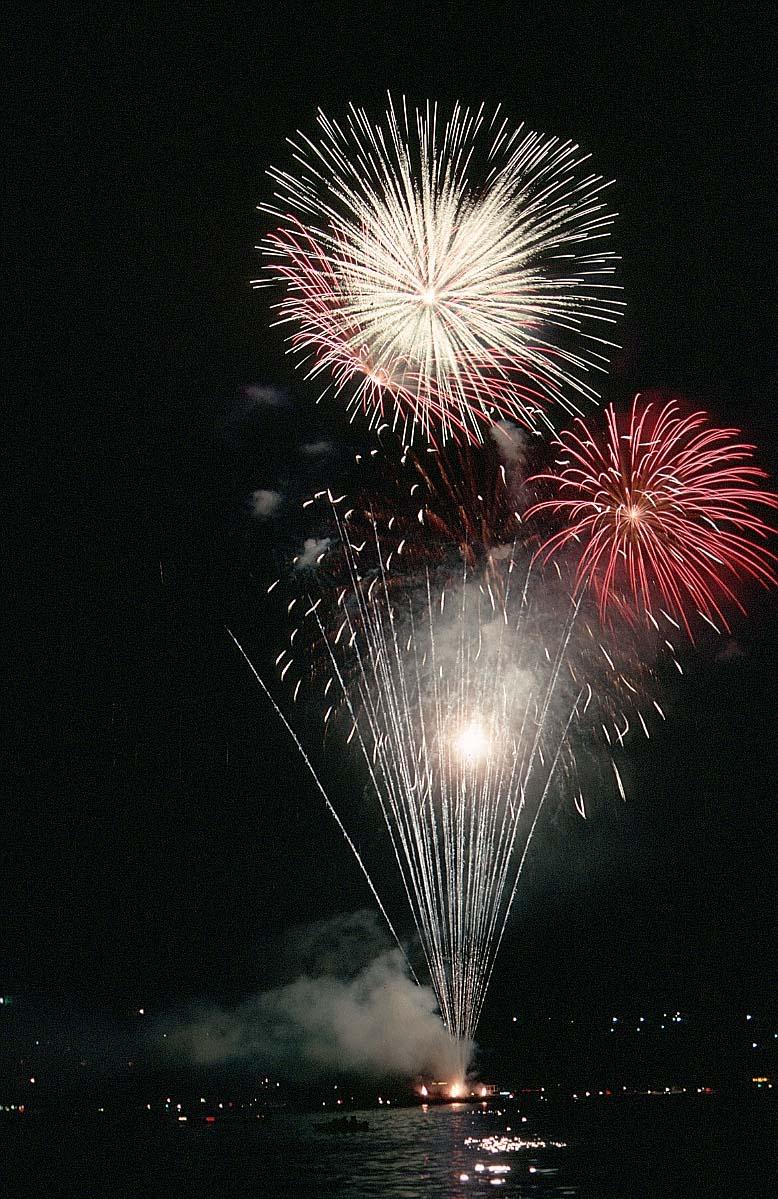 Firework-night-8x