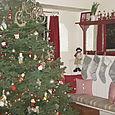 2008 Dec Christmas Tree