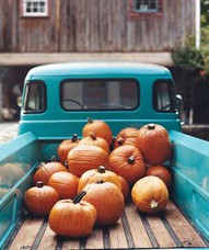 Pumpkins in turq truck
