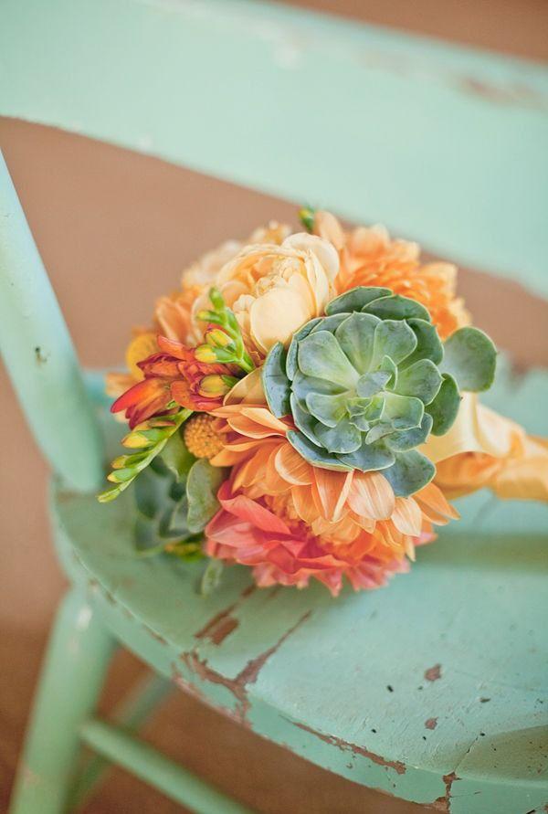 Succulents with orange