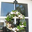 Shell-succulent Wreath