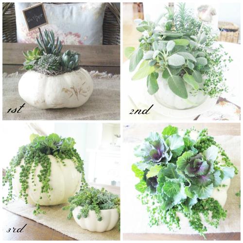Pumpkin planters through the years