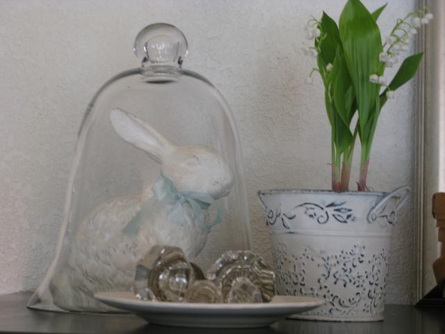 bunny vignette