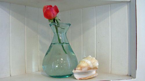 beachy vignette on shelf